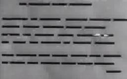 Video Art - Le retour à la raison
