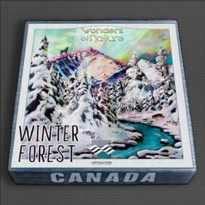 Winter Forest Ambience Pack
