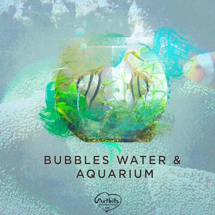 Bubbles Water & Aquariums